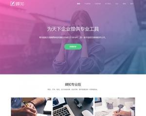 精品WEB设计公司官网